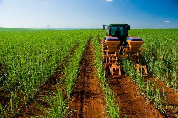 interna_agroindustrial_1_1